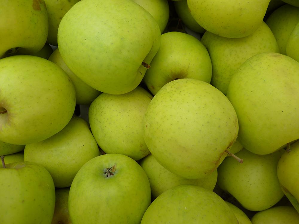 apple oțet vs varicoză care este crema de la varicoză varicoză